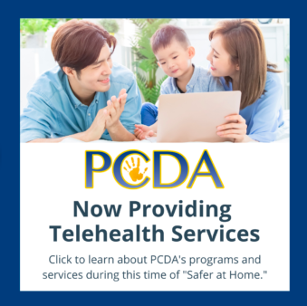 Professional Child Development Services (PCDA)